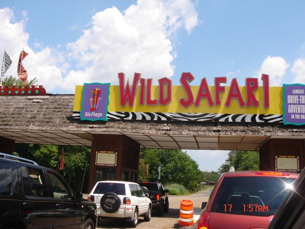 Wild Safari 1.JPG