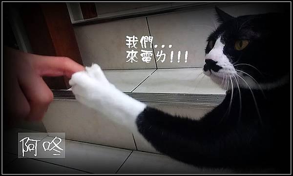 IMAG0086_調整大小04