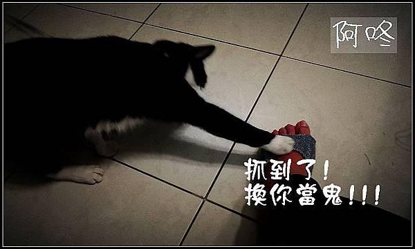IMAG0083_調整大小03