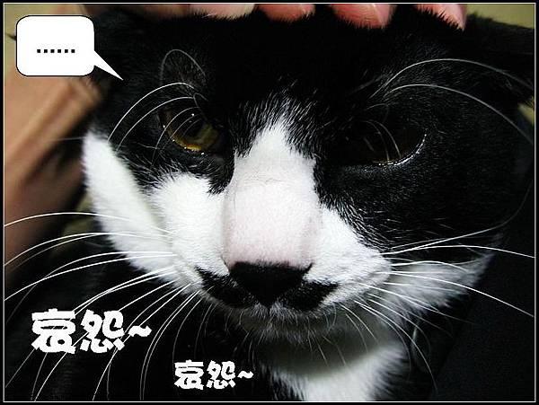 IMG_0099_大小03.jpg