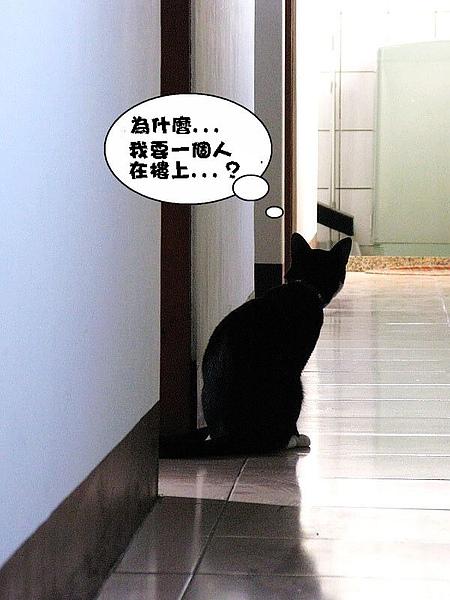 IMG_4637_大小03.jpg