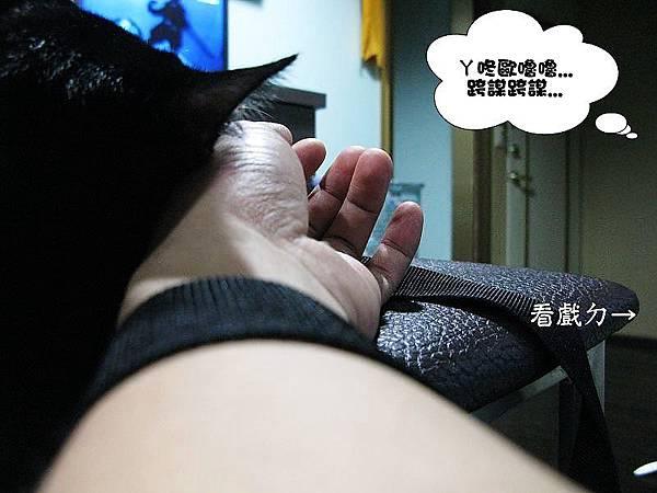 01IMG_5429_大小02.jpg