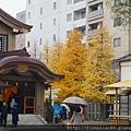Tokyo trip 684