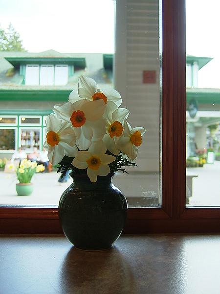 餐廳桌上擺飾用鮮花!