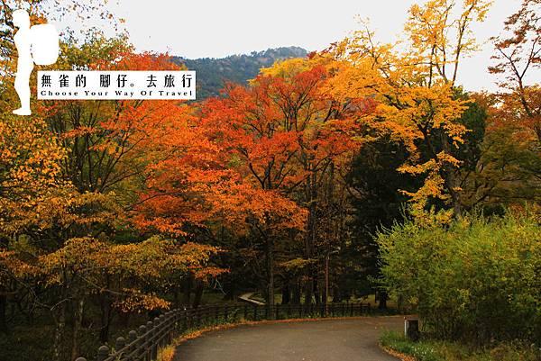 Blog_IMG_0159.jpg