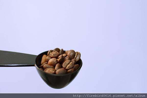 赤柴咖啡-花神7.jpg