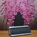 8 SoundBot(SB521)藍牙喇叭30.jpg
