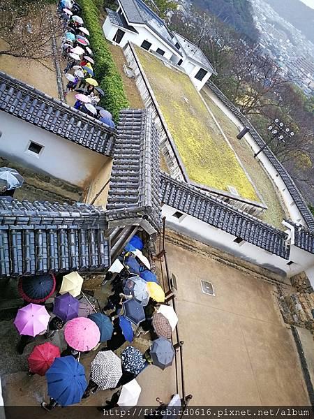 4日本自由行-姬路城52.jpg