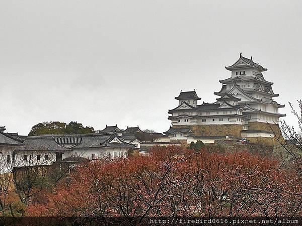 7日本自由行-姬路城67.jpg