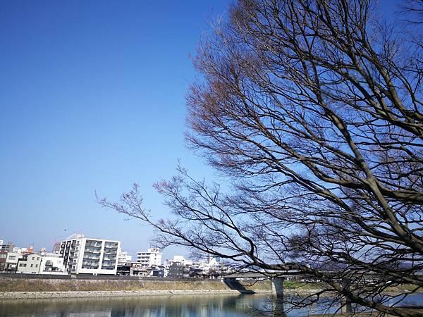 岡山後樂園-岡山城3.jpg