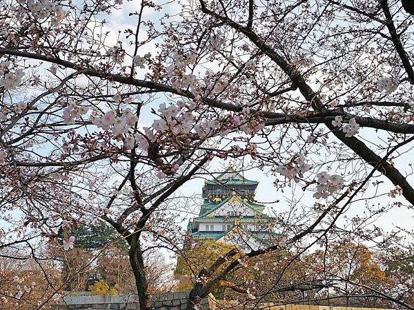 1二訪大阪城15.jpg