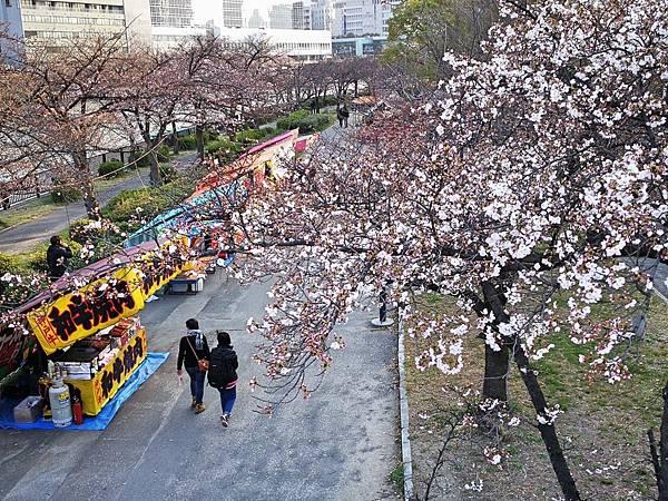 6二訪大阪城26.jpg