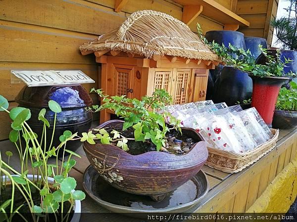 韓國釜山自由行必訪景點--甘川洞文化村39.jpg