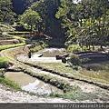 5大溪好時節農莊1.jpg