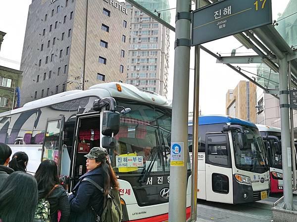 1釜山自由行Jinhae鎮海賞櫻1-7.jpg