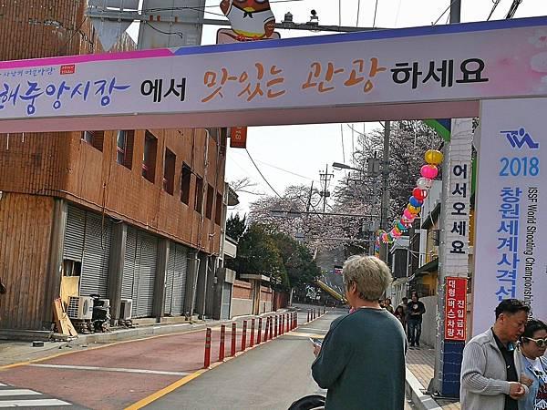 3釜山自由行Jinhae鎮海賞櫻1-48.jpg
