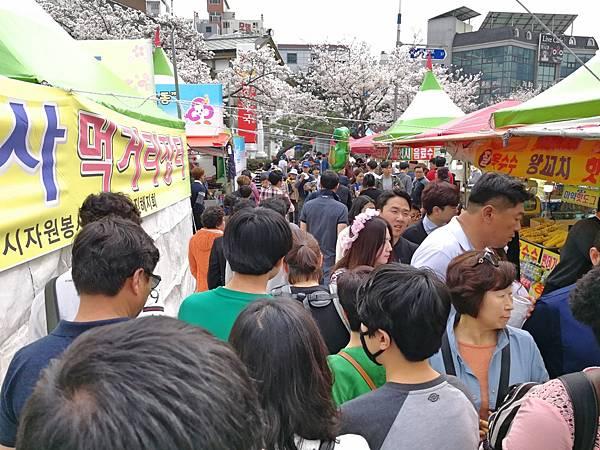 7釜山自由行Jinhae鎮海賞櫻2-49.jpg
