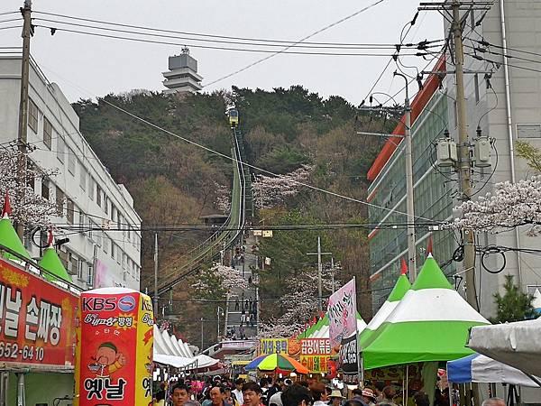 7釜山自由行Jinhae鎮海賞櫻2-51.jpg