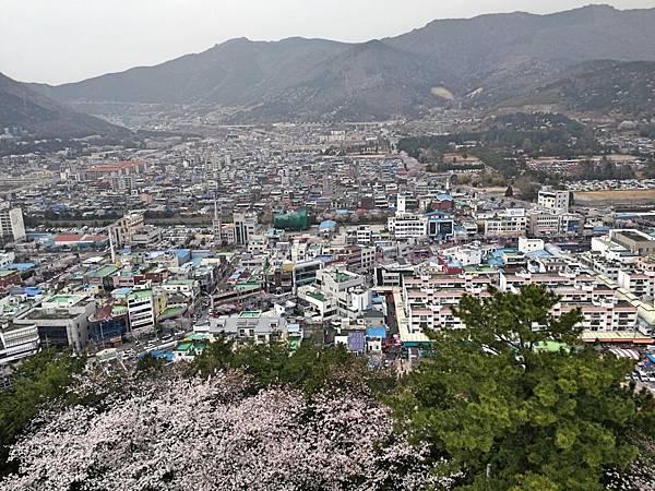 7釜山自由行Jinhae鎮海賞櫻2-61.jpg