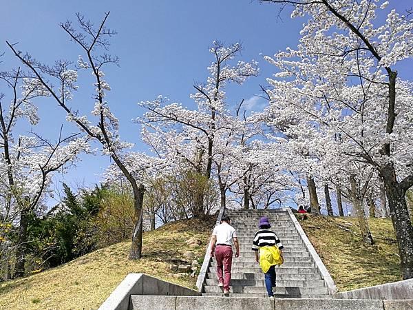韓國慶州景點佛國寺-4.jpg
