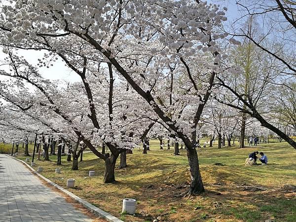 韓國慶州景點佛國寺-9.jpg