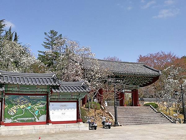 韓國慶州景點佛國寺-30.jpg