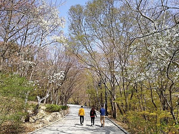 韓國慶州景點佛國寺-31.jpg