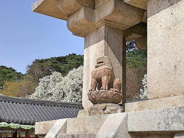韓國慶州景點佛國寺-48.jpg