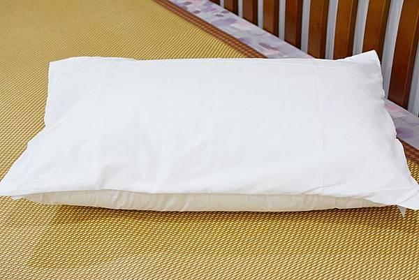 3-0寶麒麗泰不挑枕-21.jpg