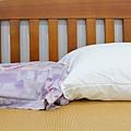 4-3寶麒麗泰不挑枕-28.jpg