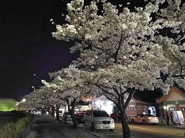 1韓國慶州自由行--市區古蹟19.jpg
