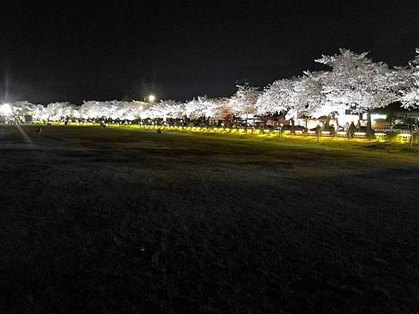 1韓國慶州自由行--市區古蹟26.jpg