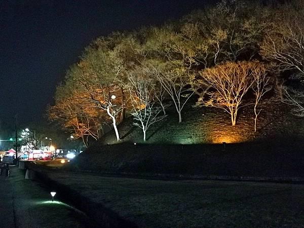 1韓國慶州自由行--市區古蹟35.jpg