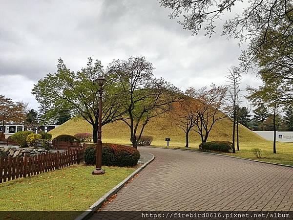 2韓國慶州自由行--市區古蹟42.jpg