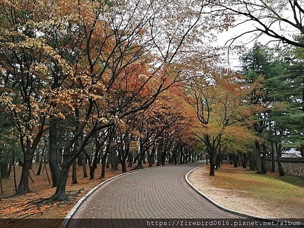 3韓國慶州自由行--市區古蹟56.jpg