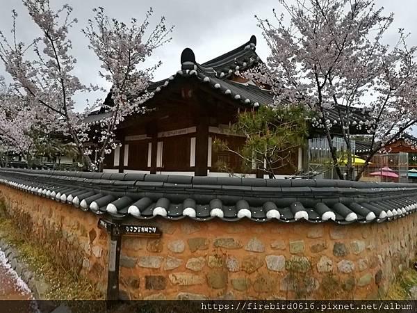 4韓國慶州自由行--市區古蹟75.jpg