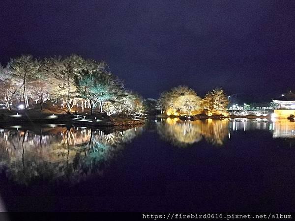 6韓國慶州自由行--市區古蹟139.jpg