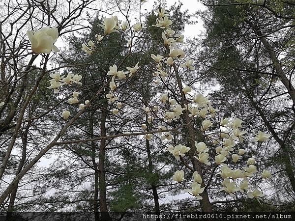 5慶州南山-62.jpg