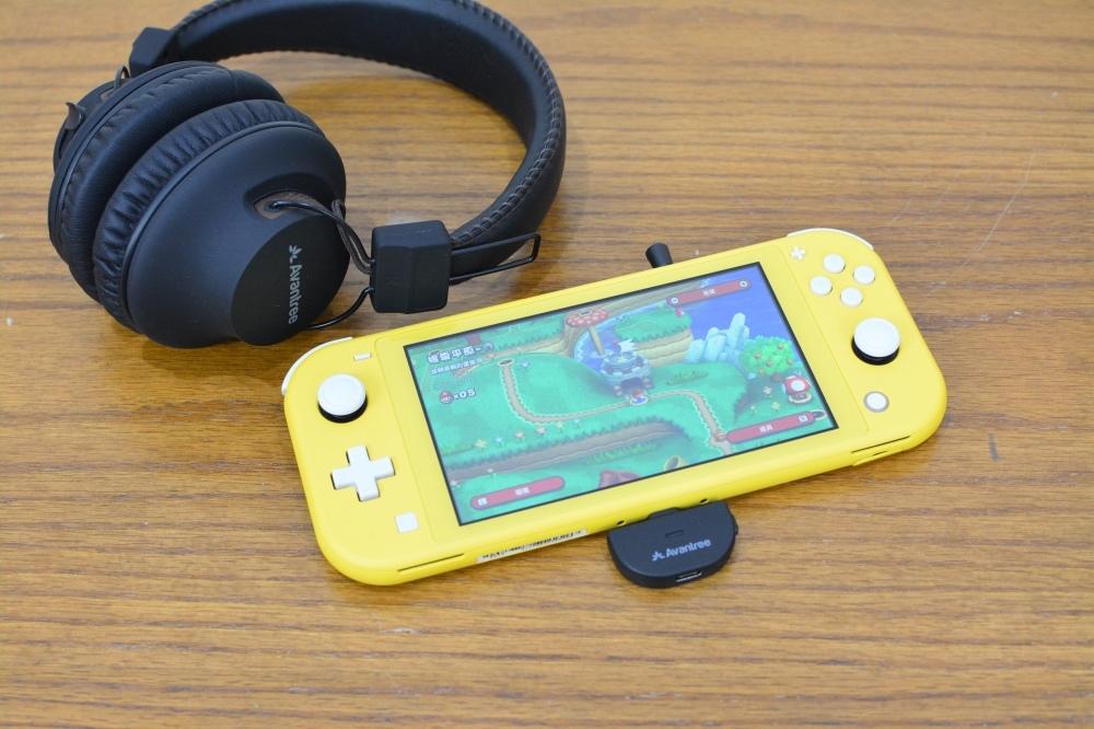2-8任天堂SwitchLite-31.jpg