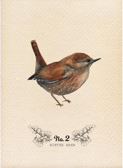 10-09 Birds2.jpg
