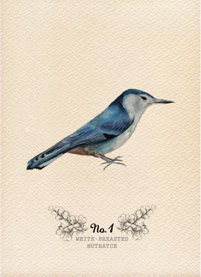 10-09 Birds1.jpg