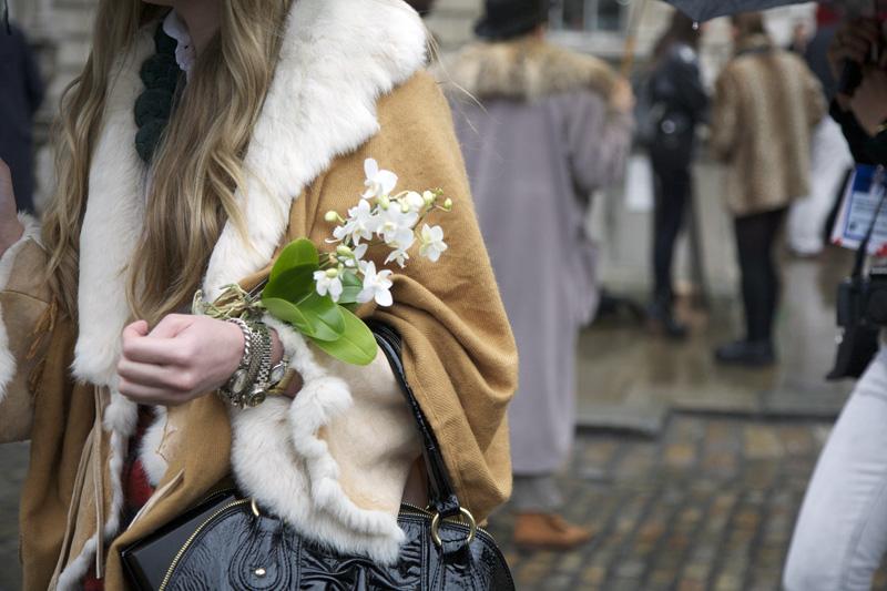 model-flower-2 street peeper.jpg