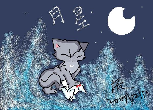 月星.jpg