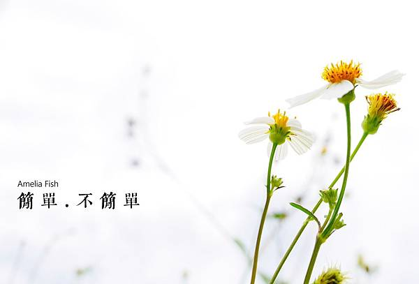 P1020881_副本寫字