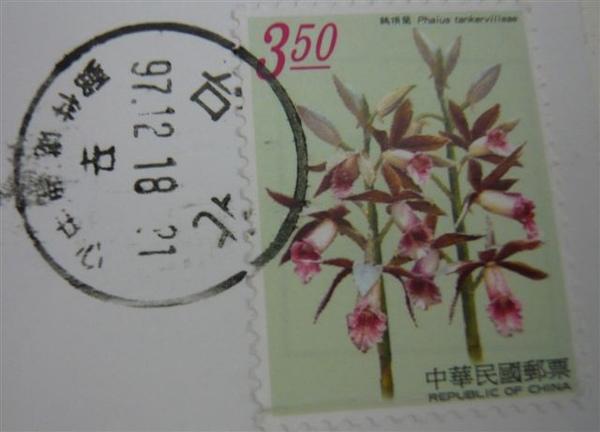 P1020480.JPG