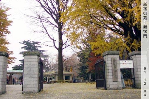 新宿御苑-新宿門.jpg