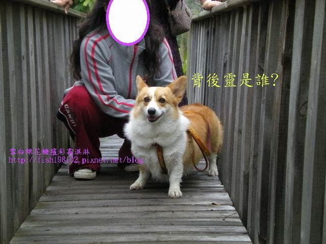 080520花東之旅 (8).jpg