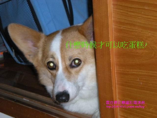 080520花東之旅 (115).jpg