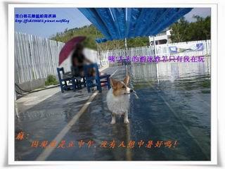 DSCN9289.jpg