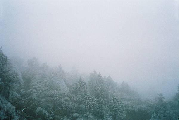 太平山~雪 (3)